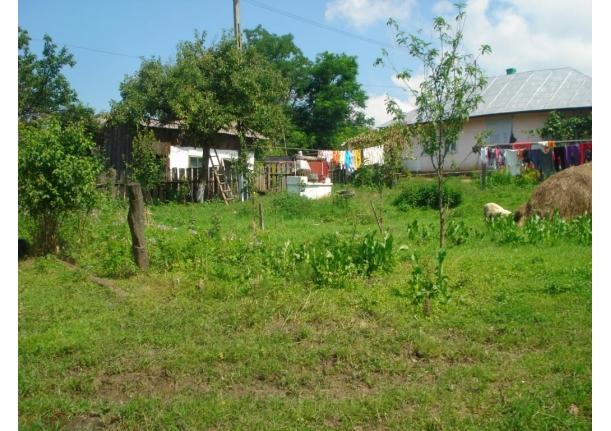 Ajutoare din Fărcașa pentru sinistrații din Moldova