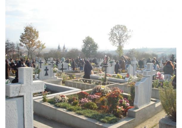 Luminație Fărcașa 2009